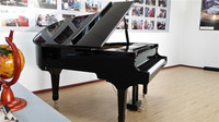 Delicate 2013 spring high quality electric piano