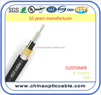 china manufacture FTTH inside double jacket 2 core fiber optic cable price per meter