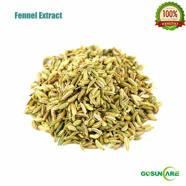 Natural Raw Material Fennel Seed Extract