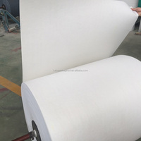 Spunbond/non woven polyester mat /composite mat used for APP/SBS modified bitumen waterproofing membrane