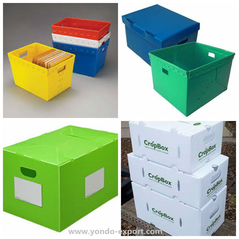 Custom Corrugated Plastic Box/Coroplast Box/Correx Box