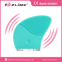 Two side use USB rechargeable silicon facial brushes