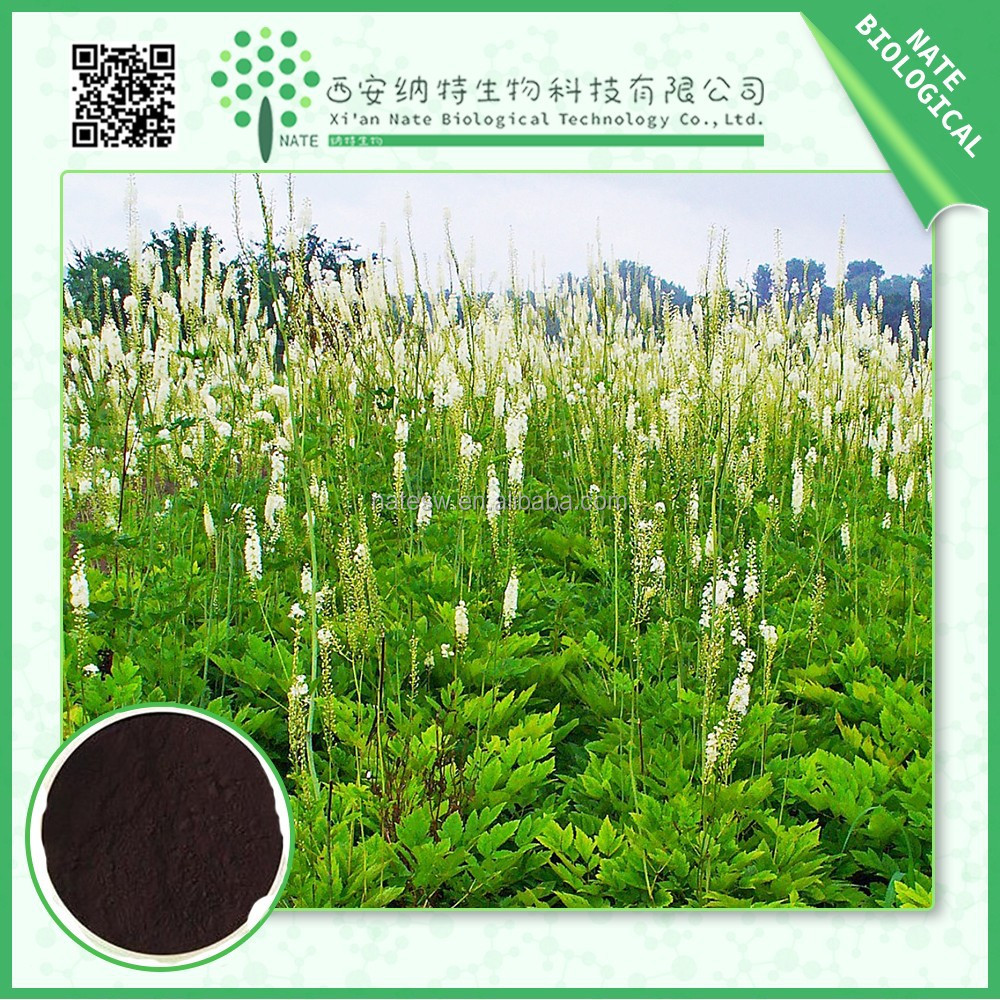 China wholesale black cohosh extract 8% triterpenoid saponins