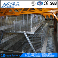 Broiler Chicken Cage And Layer Chicken