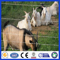 DM cheap sheep and goat fence panels for sale