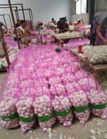 Large Quantity 2018 Fresh Chinese While Garlic