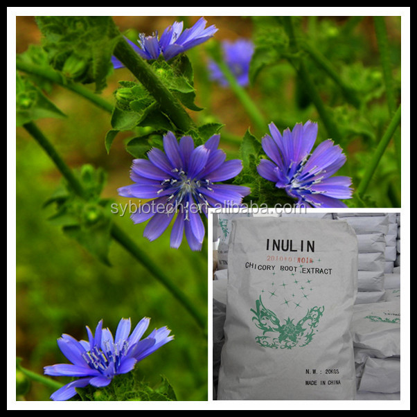 Chicory inulin , inulin manufacturer china,food grade inulin