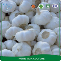 5 cm Fresh Normal White Garlic