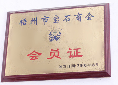 Gem association member certificate
