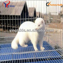 High quality different material mink cages factory price