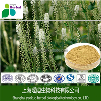 Herbal extract Black Cohosh Powder2.5-8% Triterpene Saponins, Black Cohosh Extract with Free sample