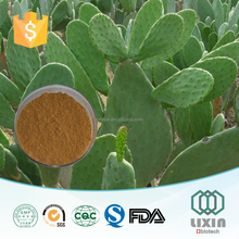 Hot selling private label GMP OEM factory10:1 herbal Cactus roots and stems Extract powder anti-inflammatory cream