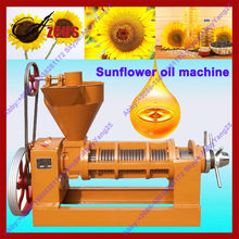 Hot sale peanut/soybean/sunflower small cold press oil machine