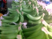 DELMONTE CAVENDISH BANANA,ORANGES(CITRUS FRUITS),VEGETABLES,WHEAT,CORN AND KIDNEY BEANS,RICE