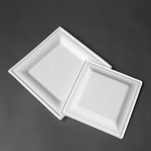 10 Inch Heavy Duty Square <strong>Plates</strong> 100% Natural Sugarcane Biodegradable Compostable Bagasse, Eco-friendly square paper <strong>plates</strong>