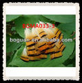 Cheap Golden Pheasant Feather For Sale