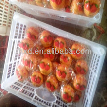 hot sale 2016 new crop Fresh mandarin orange for Russian