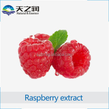 Wholesale Raspberry Fruit Extract 10:1 Raspberry Ketone Powder/ Raspberry Fruit P.E in Bulk