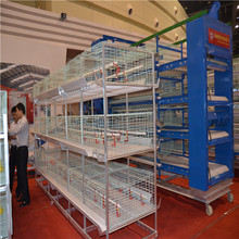 Low price hot sale and high quality poultry farming equipment baby chick cage