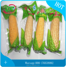 Chinese Low Price Vacuum Storage Bag Vegetable/Cooked-Food/Frozen Food/Snack