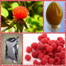 Lose Weight 100% pure natural raspberry ketone made in china