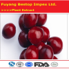 Man Yue Ju GMP Supplier Anthocyanidins Cranberry Powder