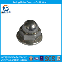 Hexagon Domed Head Flange Cap Nut