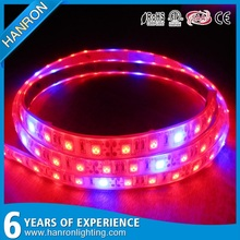 High quality SMD 5050 Waterproof Epistar led rope plant grow light strip lighting / 12V DC 24V LED Grow Light
