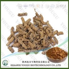 Medicinal Indianmulberry Root, Original Raw Crude Organic High quality Lonicera Japonica Thunb, Radix Morinda Officinalis