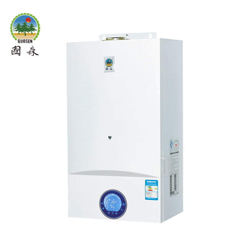 Compact Conventional Wall-hung Boiler with Auto Function and Info Top System
