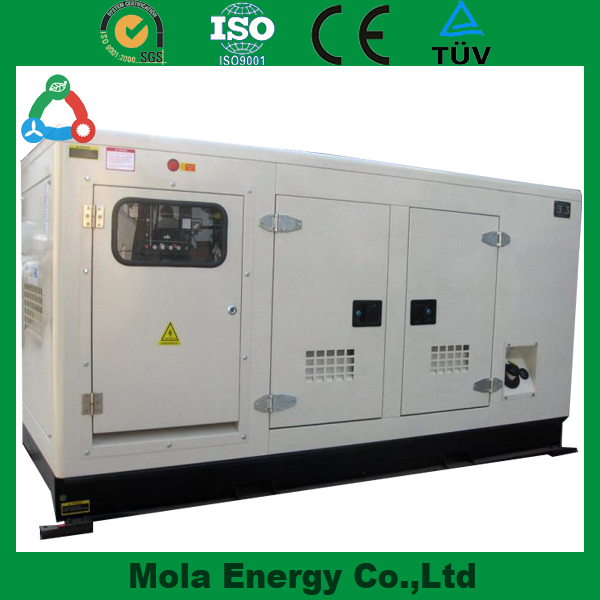 Diesle / Nature Gas / Biogas Fuel 200KW Soundproof Generating Set