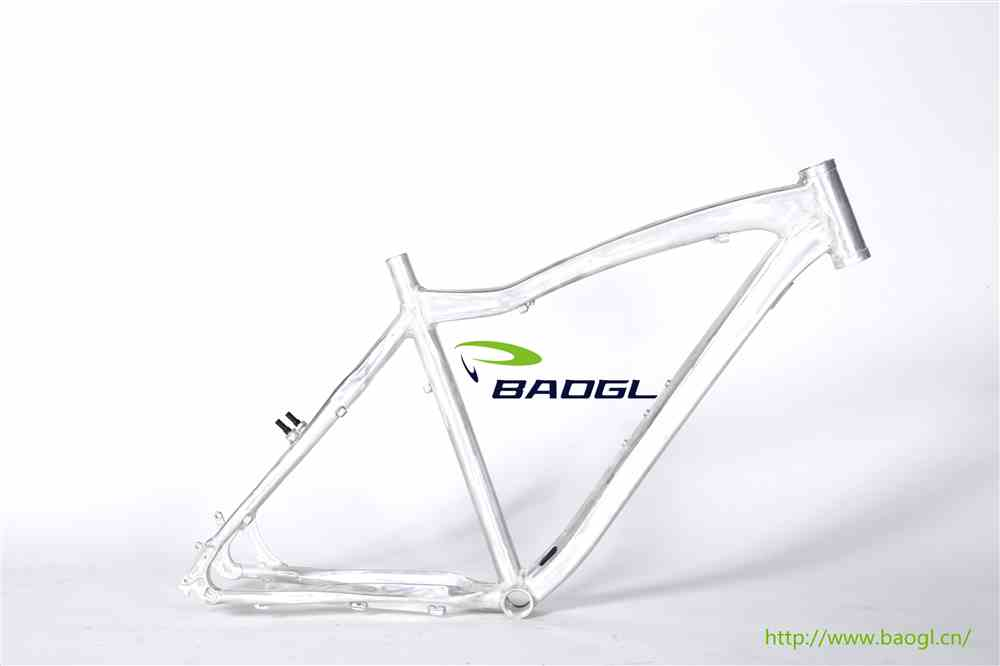 BAOGL bicycle frame for gas engine bike