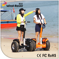 Electric Scooter Parts Wind Rover V5+ Motor Scooter For Cheap Selling