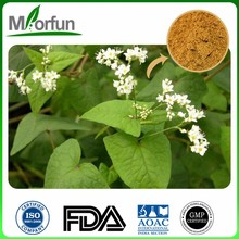 Best Quality tartary buckwheat fine powder organic buckwheat hulled for long time sex