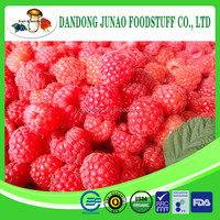 iqf raspberry,raspberry concentrate juice