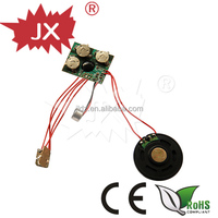 2014New product Small sound Recorder/Recordable voice module