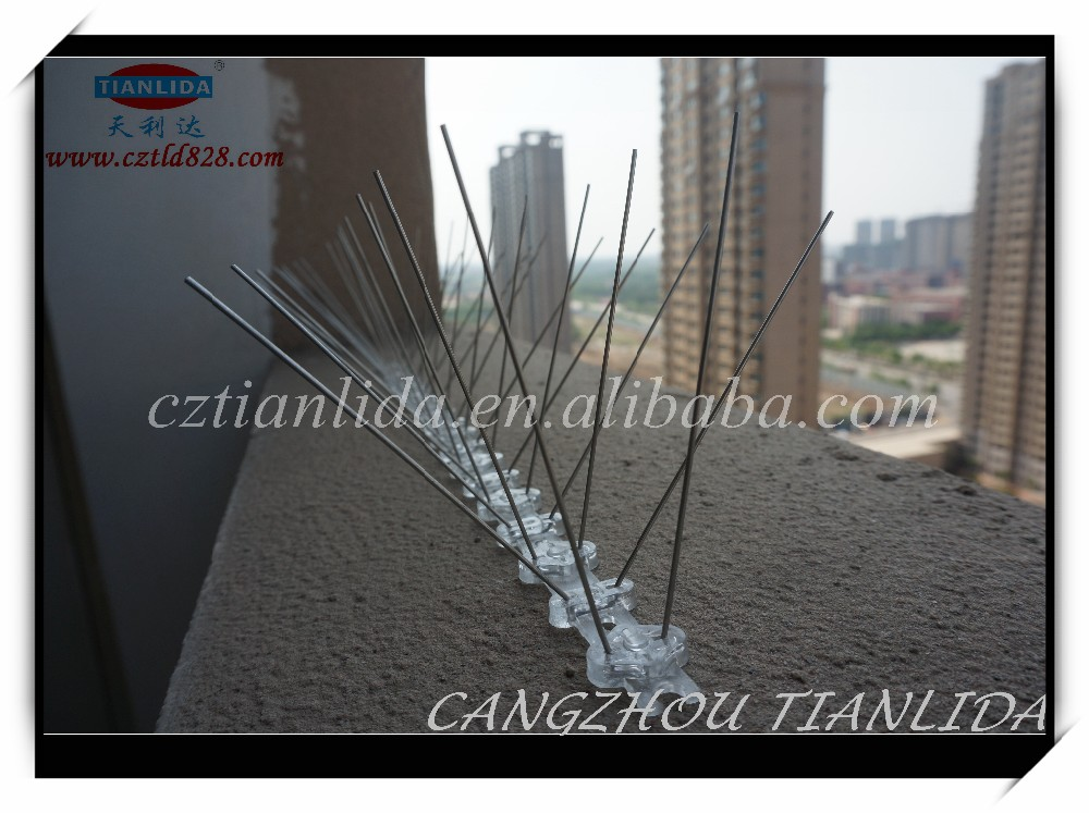 Animal Bird Spikes For Pest Trap Eco-friendly Bird Spikes TLD5001A