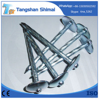Roofing Nail Type and Steel Material umbrella head roofing nails factory