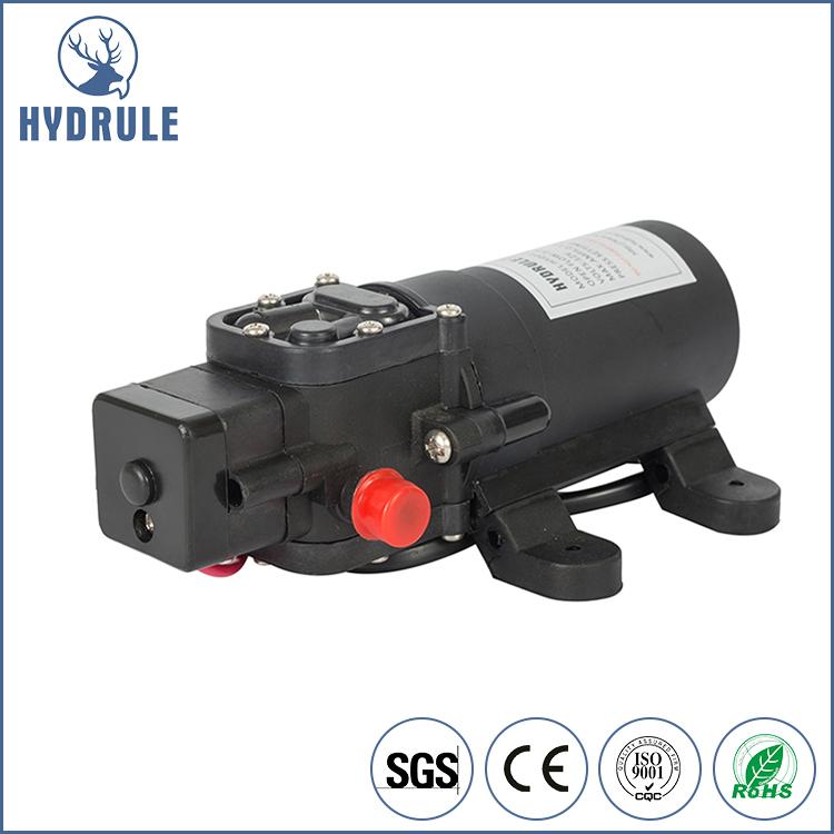 Hydrule 12 вольт водяной насос для орошения и RV