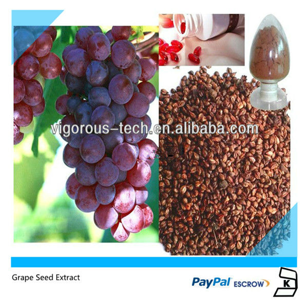 competitive price & high quality Grape seed Extract/grape seed p.e