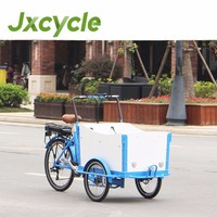 family mini truck cargo tricycle/mini electric bike