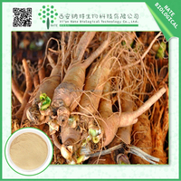 Healthy Supplements korean red ginseng extract gold water soluble ginseng powder In Stock
