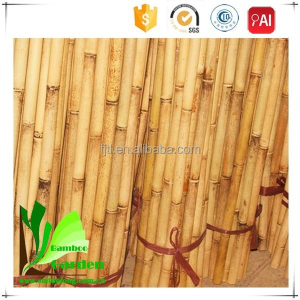 Lowes en plastique bambou polonais mat riel en bambou id for Bambou en plastique