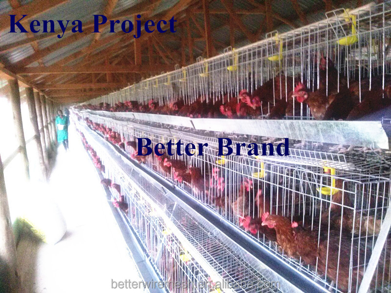 Better Factory hot-sale 120 birds A type cheap chicken coops