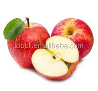 Fresh Apple Fruit Wholesale Distributors