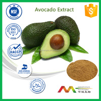 ISO&GMP manufacture wholesale price Avocado Extract powder