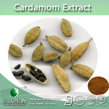 Hot Selling Cardamom Powder From 3W GMP factory