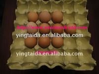 egg tray craft