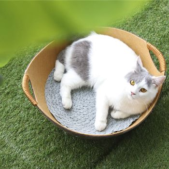 Tianyuan pet factory direct sale soft colorful felt cat bed round with mat