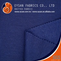 EYSAN 70 Polyester 30 Cotton Back Brushed Flat Back RIB Knit Fabric